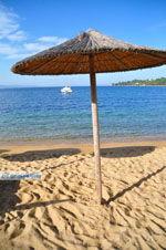 Aghia Paraskevi (Platanias beach) | Skiathos Sporaden | De Griekse Gids foto 24 - Foto van De Griekse Gids