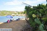 Aghia Paraskevi (Platanias beach) | Skiathos Sporaden | De Griekse Gids foto 31 - Foto van De Griekse Gids