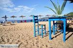 JustGreece.com Aghia Paraskevi (Platanias beach) | Skiathos Sporaden | De Griekse Gids foto 32 - Foto van De Griekse Gids