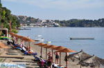 Vassilias | Skiathos Sporaden | De Griekse Gids foto 7 - Foto van De Griekse Gids