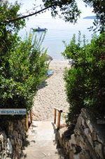 Vassilias | Skiathos Sporaden | De Griekse Gids foto 8 - Foto van De Griekse Gids