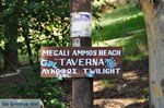 Megali Ammos (Ftelia) | Skiathos Sporaden | De Griekse Gids foto 1 - Foto van De Griekse Gids