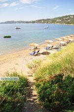 Megali Ammos (Ftelia) | Skiathos Sporaden | De Griekse Gids foto 4 - Foto van De Griekse Gids