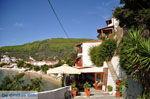 Megali Ammos (Ftelia) | Skiathos Sporaden | De Griekse Gids foto 6 - Foto van De Griekse Gids