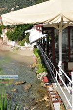 Megali Ammos (Ftelia) | Skiathos Sporaden | De Griekse Gids foto 14 - Foto van De Griekse Gids
