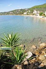 Megali Ammos (Ftelia) | Skiathos Sporaden | De Griekse Gids foto 16 - Foto van De Griekse Gids