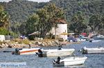Skiathos stad | Skiathos Sporaden | De Griekse Gids foto 5 - Foto van De Griekse Gids