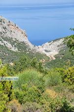 Nikotsara strand | Skiathos Sporaden | De Griekse Gids foto 1 - Foto van De Griekse Gids