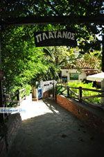 Restaurant Platanos bij Profitis Ilias | Skiathos Sporaden | De Griekse Gids foto 2 - Foto van De Griekse Gids