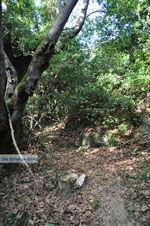 Wandelpaden bij Klooster Kechria | Skiathos Sporaden | De Griekse Gids foto 1 - Foto van De Griekse Gids