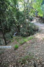 Wandelpaden bij Klooster Kechria | Skiathos Sporaden | De Griekse Gids foto 2 - Foto van De Griekse Gids