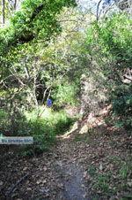 Wandelpaden bij Klooster Kechria | Skiathos Sporaden | De Griekse Gids foto 5 - Foto van De Griekse Gids