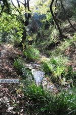 Wandelpaden bij Klooster Kechria | Skiathos Sporaden | De Griekse Gids foto 18 - Foto van De Griekse Gids