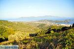 Panoramafoto Skiathos stad | Skiathos Sporaden | De Griekse Gids foto 1 - Foto van De Griekse Gids