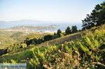 Panoramafoto Skiathos stad | Skiathos Sporaden | De Griekse Gids foto 8 - Foto van De Griekse Gids
