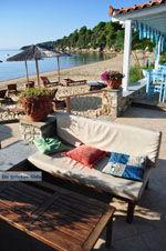 Maniatis Garden Achladies | Skiathos Sporaden | De Griekse Gids foto 3 - Foto van De Griekse Gids