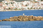 Skiathos stad | Skiathos Sporaden | De Griekse Gids foto 71 - Foto van De Griekse Gids