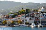 Skiathos stad | Skiathos Sporaden | De Griekse Gids foto 79 - Foto van De Griekse Gids