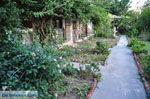 Maniatis Garden Achladies | Skiathos Sporaden | De Griekse Gids foto 5 - Foto van De Griekse Gids