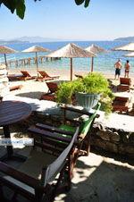 Maniatis Garden Achladies | Skiathos Sporaden | De Griekse Gids foto 13 - Foto van De Griekse Gids