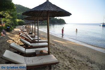Maratha beach bij Koukounaries | Skiathos Sporaden | De Griekse Gids foto 15 - Foto van De Griekse Gids