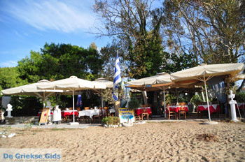 Troulos beach | Skiathos Sporaden | De Griekse Gids foto 16 - Foto van De Griekse Gids