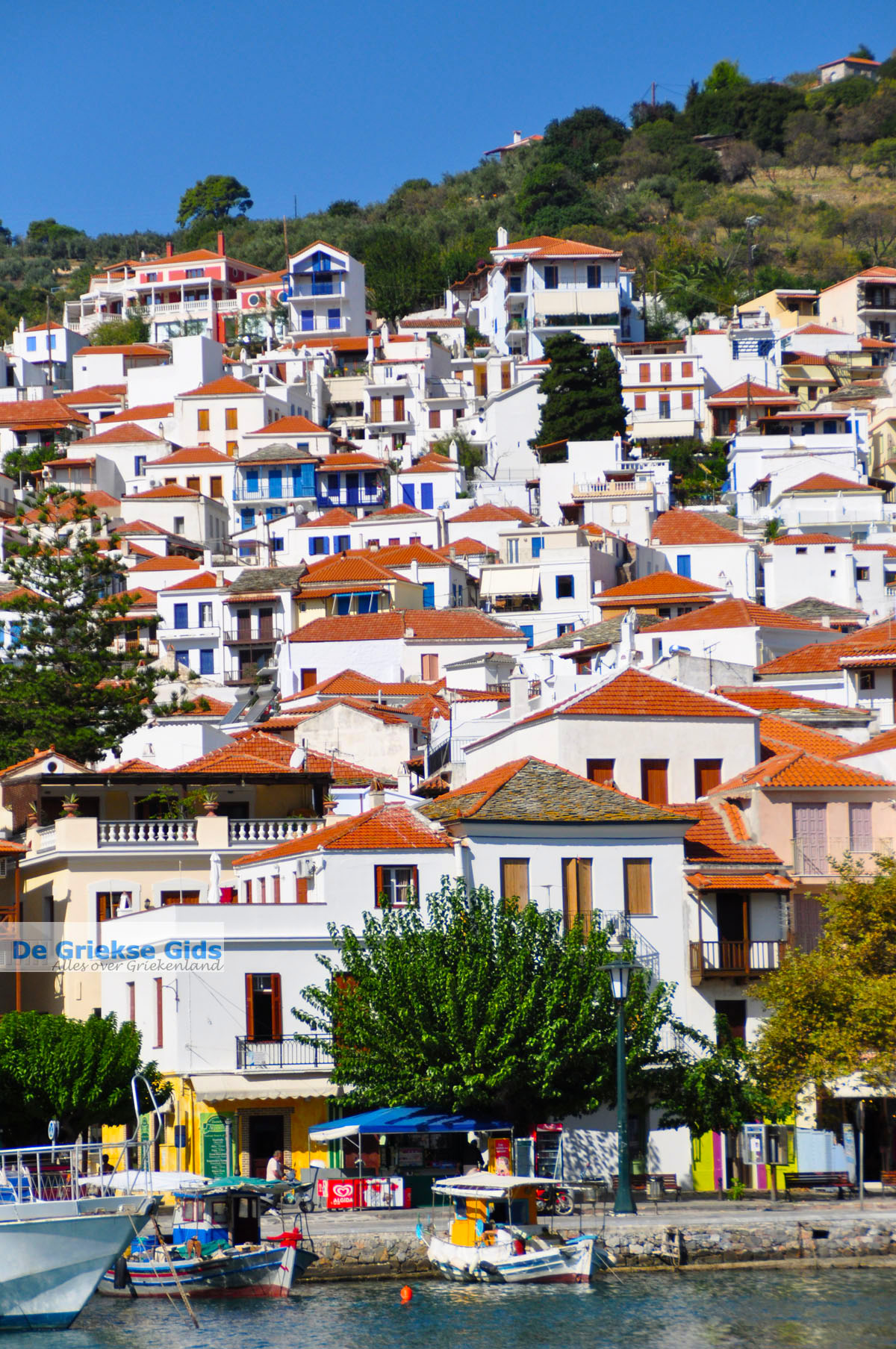 foto Skopelos stad | Sporaden Griekenland foto 10