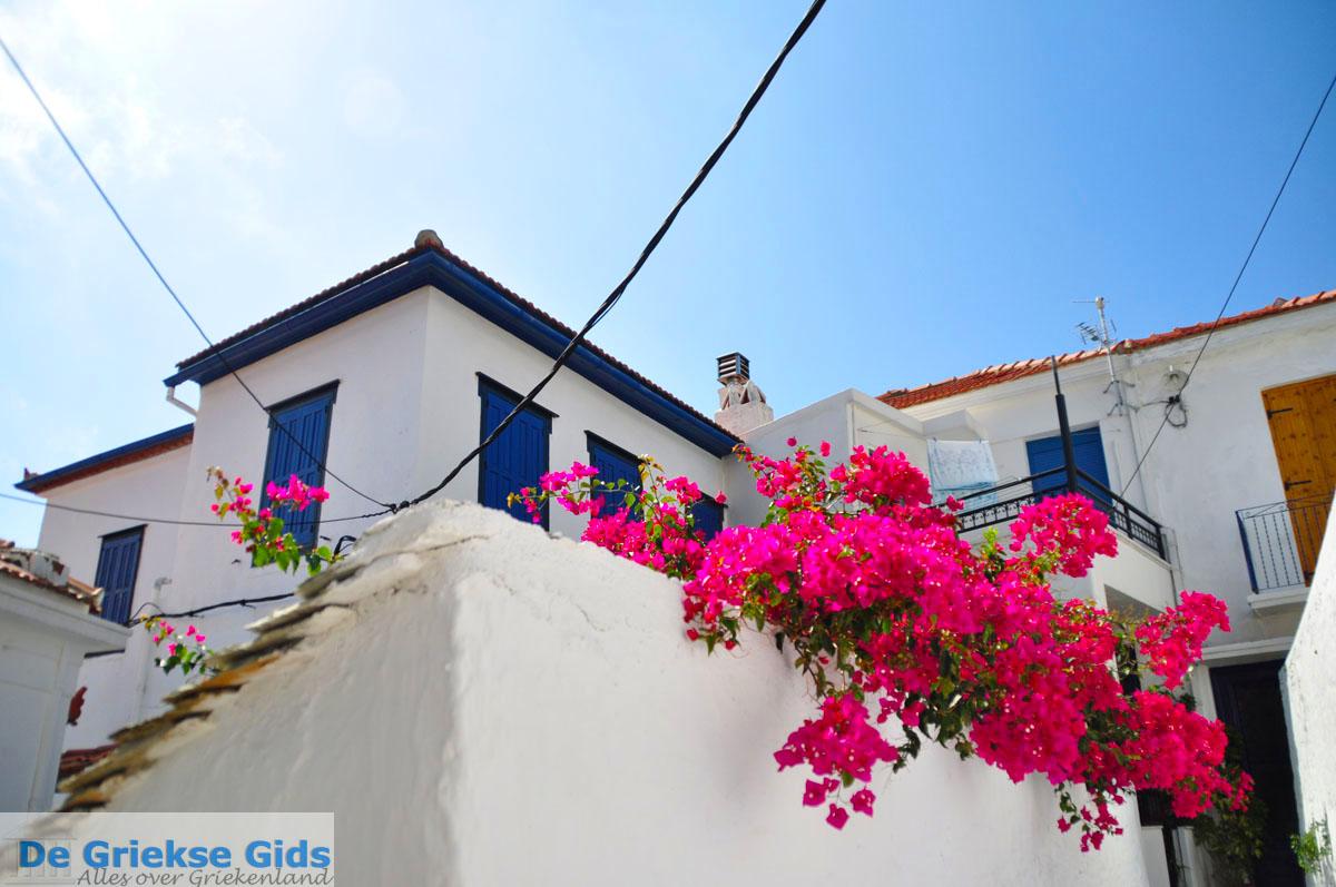 foto Skopelos stad   Sporaden Griekenland foto 65