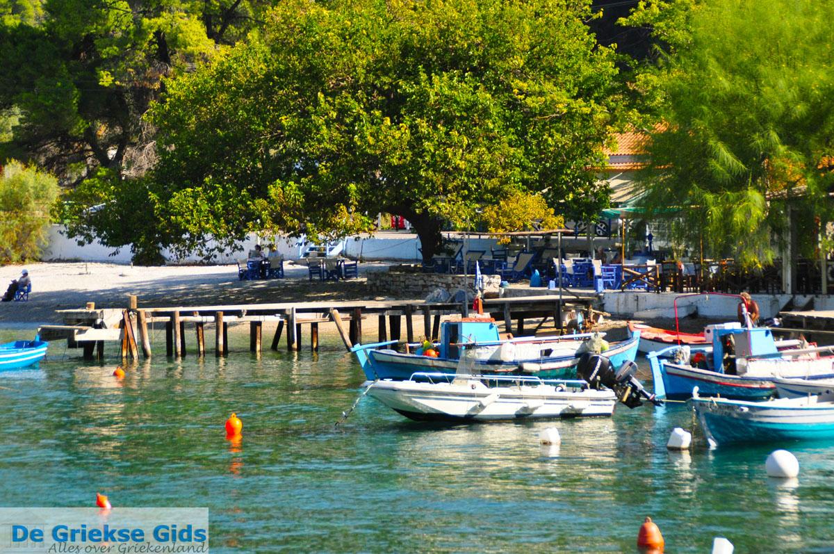 foto Agnontas | Skopelos Sporaden Griekenland foto 10