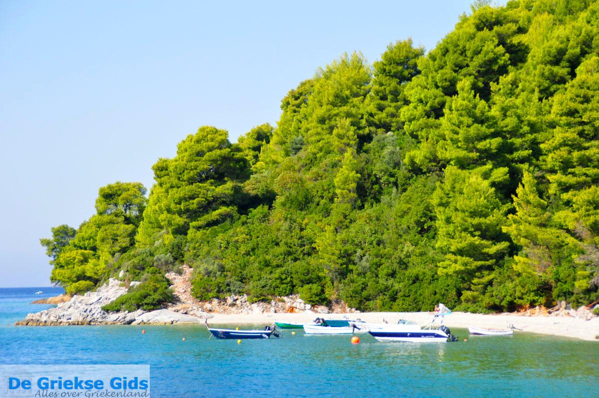 foto Panormos Skopelos | Sporaden | De Griekse Gids foto 13