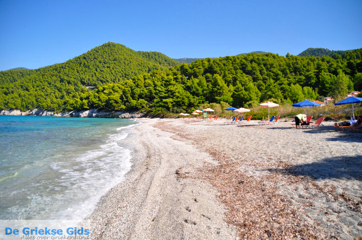 foto Milia | Skopelos Sporaden Griekenland foto 11