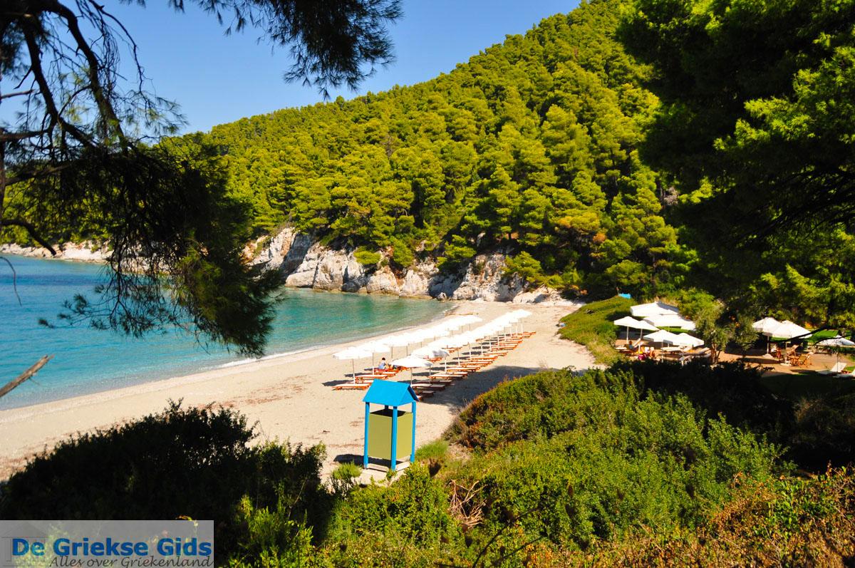 foto Kastani | Skopelos Sporaden Griekenland foto 6