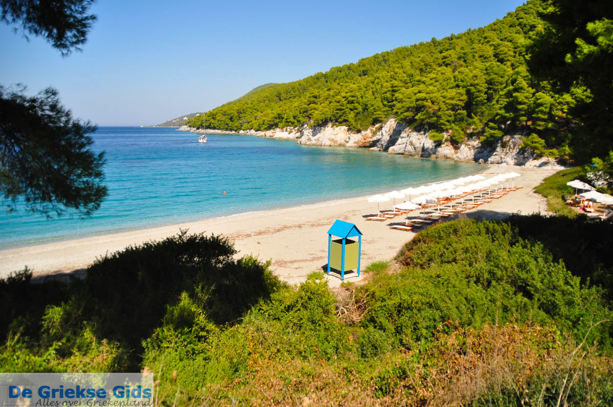 foto Kastani | Skopelos Sporaden Griekenland foto 10