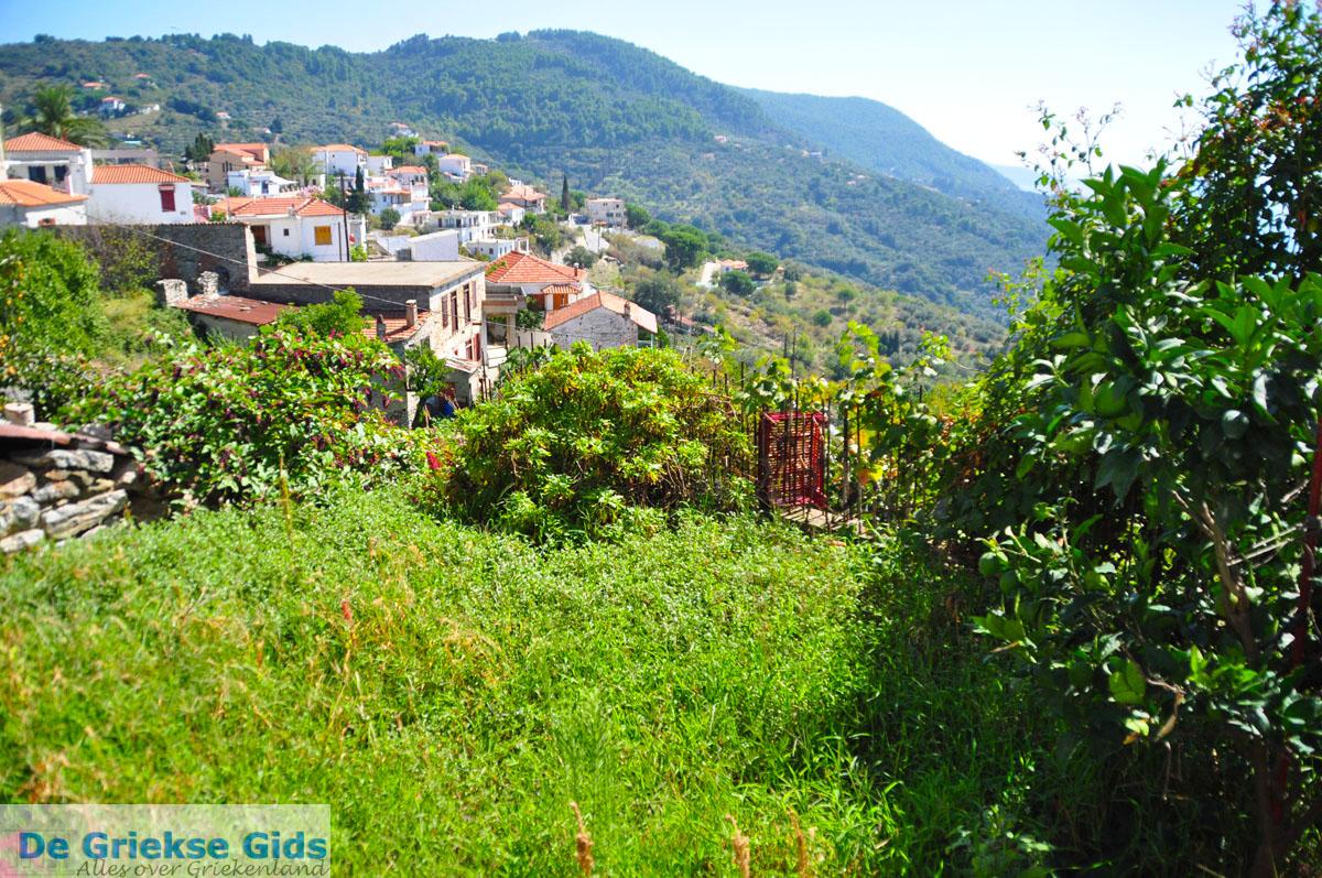 foto Glossa | Skopelos Sporaden | De Griekse Gids foto 17