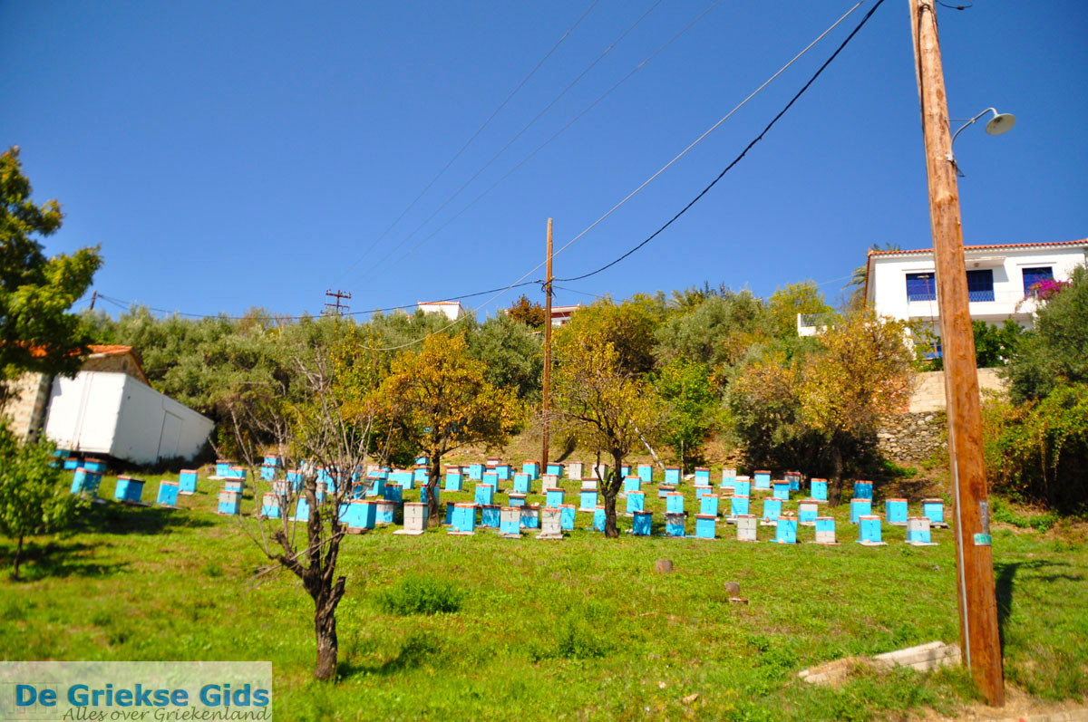 foto Haven Loutraki bij Glossa | Skopelos Sporaden Griekenland 20