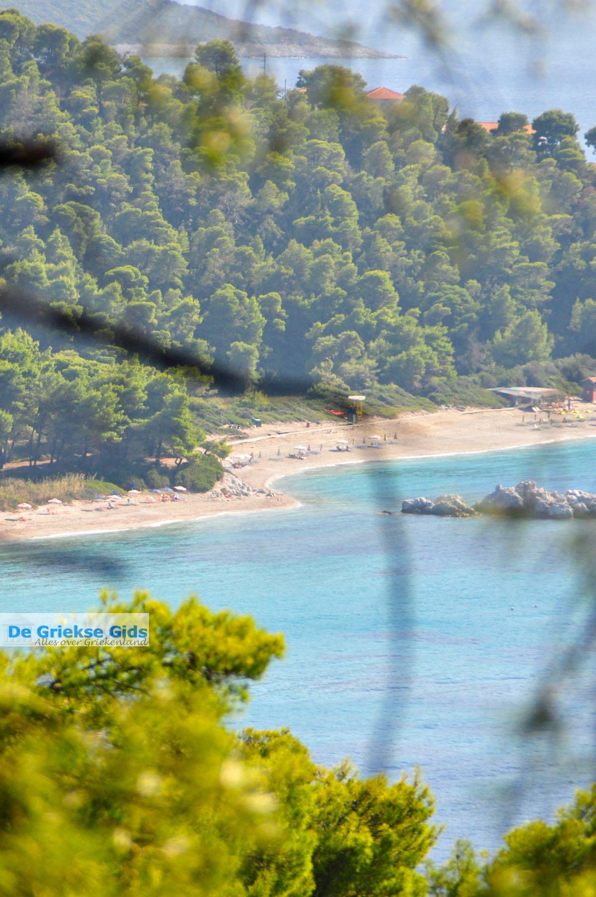foto Bij de stranden Kastani en Milia | Skopelos Sporaden Griekenland foto 1