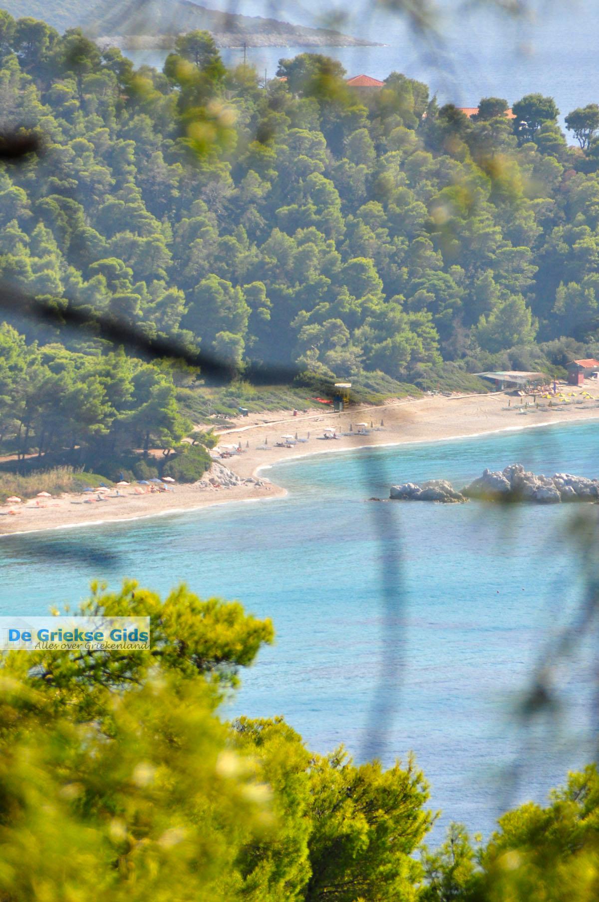 foto Bij de stranden Kastani en Milia   Skopelos Sporaden   De griekse Gids foto 2