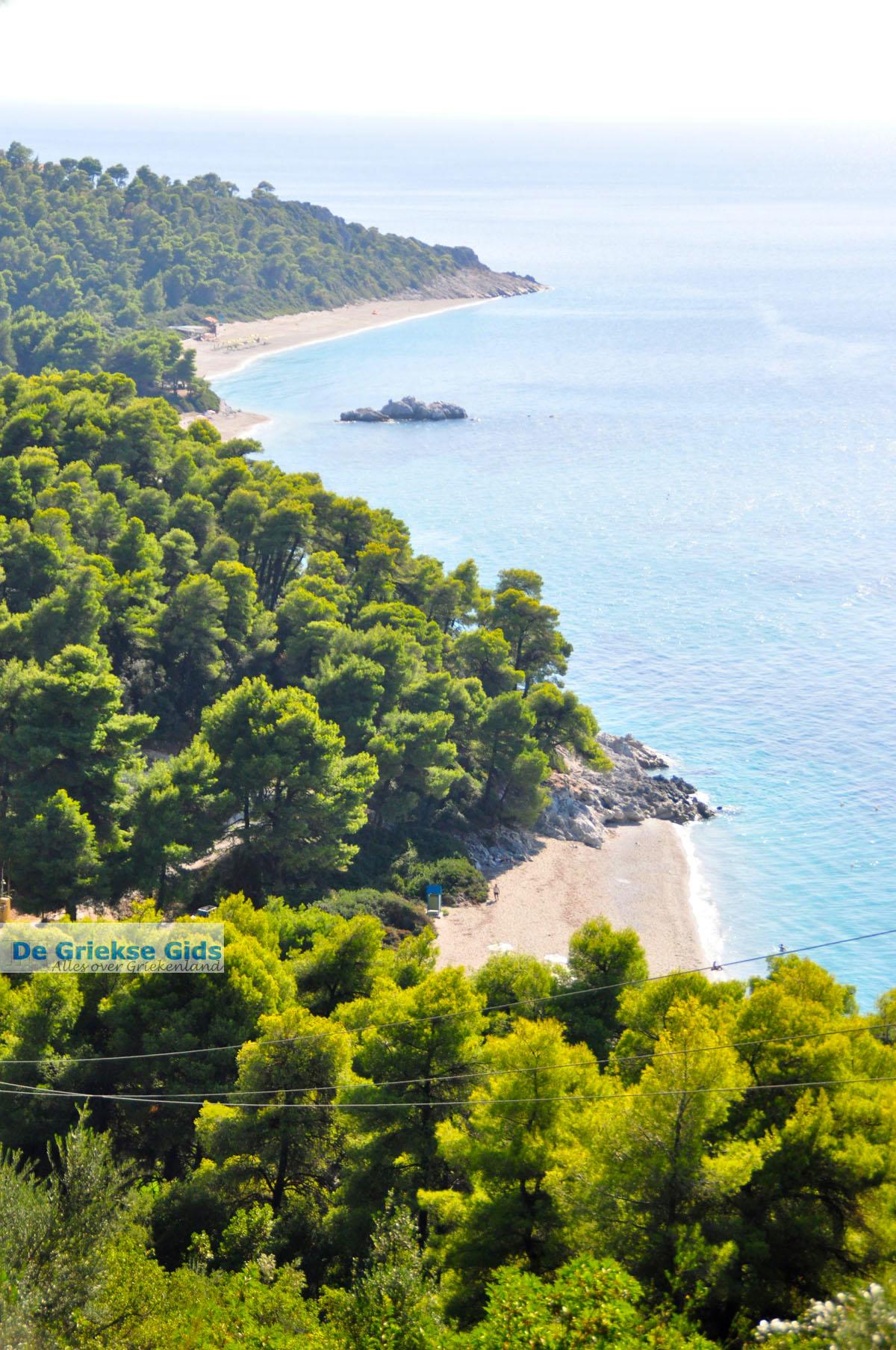 foto Stranden Kastani en Milia |Skopelos Sporaden | De Griekse Gids foto 7