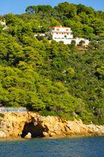 Skopelos, de groene noordkust | Skopelos Sporaden | De Griekse Gids - Foto van De Griekse Gids