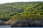 De groene oostkust van Skopelos | Sporaden | De Griekse Gids foto 3 - Foto van De Griekse Gids