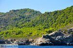 De groene oostkust van Skopelos | Sporaden | De Griekse Gids foto 7 - Foto van De Griekse Gids