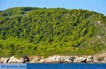 De groene oostkust van Skopelos | Sporaden | De Griekse Gids foto 8 - Foto van De Griekse Gids
