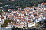 Skopelos stad | Sporaden | De Griekse Gids foto 3 - Foto van De Griekse Gids