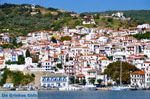 Skopelos stad | Sporaden | De Griekse Gids foto 5 - Foto van De Griekse Gids