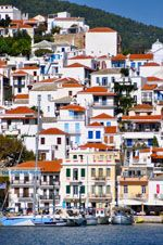 Skopelos stad | Sporaden | De Griekse Gids foto 6 - Foto van De Griekse Gids