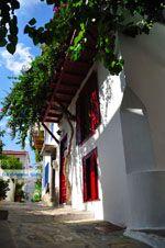 Skopelos stad | Sporaden | De Griekse Gids foto 33 - Foto van De Griekse Gids