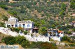 Skopelos stad | Sporaden | De Griekse Gids foto 54 - Foto van De Griekse Gids