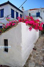 Skopelos stad | Sporaden | De Griekse Gids foto 63 - Foto van De Griekse Gids