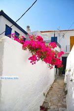 Skopelos stad | Sporaden | De Griekse Gids foto 64 - Foto van De Griekse Gids