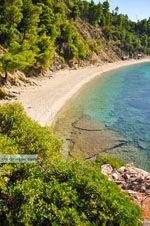 Stafylos | Skopelos Sporaden | De Griekse Gids foto 7 - Foto van De Griekse Gids